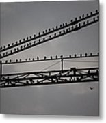 Birds On Crane Metal Print