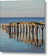 Birds On Old Dock On The Bay Metal Print