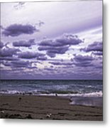 Birds On The Beach Metal Print