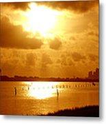 Birds On The Poles Sunrise Metal Print