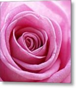 Birthday Pink Metal Print