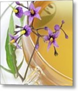Bittersweet Herbal Tea Metal Print