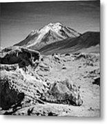Bizarre Landscape Bolivia Black And White Select Focus Metal Print