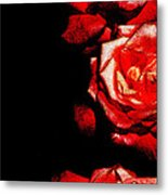 Black And Rose Metal Print