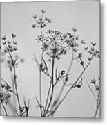 Black And White Floral Silhouettes Metal Print