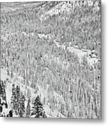 Black And White Lake Tahoe California Covered In Snow During The Winter Metal Print