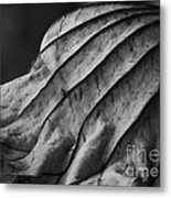Black And White Lotus Leaf Metal Print