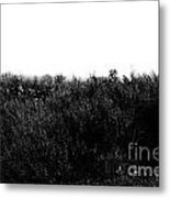 Black And White Magic V2 Metal Print