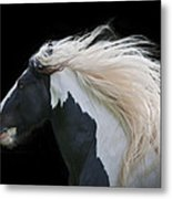 Black And White Study IIi Metal Print by Terry Kirkland Cook