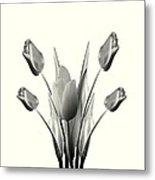 Black And White Tulips Drawing Metal Print