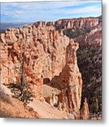 Black Birch Canyon Lookout Metal Print