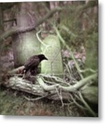 Black Bird In Forgotten Graveyard Metal Print