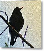 Black Bird Perch Metal Print