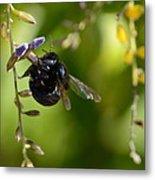 Black Bumblebee Metal Print