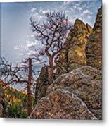 Black Hills Boulders Metal Print