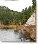 Black Hills Lake Metal Print
