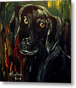 Black Lab IIi Metal Print