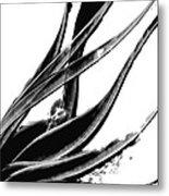 Black Magic 303 By Sharon Cummings Metal Print