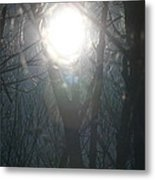 Black On Sun   Metal Print