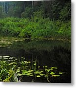 Black Pond Metal Print