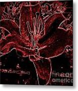 Black Red Lilly Metal Print