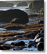 Black Rocks Lichen And Sea  Metal Print