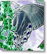 Black Swallowtail Abstract  Metal Print by Kim Galluzzo Wozniak