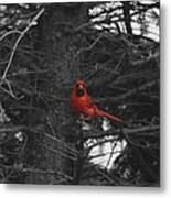 Black White And Red Metal Print
