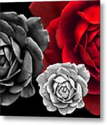Black White Red Roses Abstract Metal Print