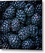 Blackberries Metal Print