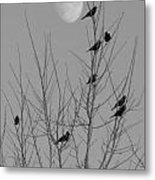 Blackbirds By The Moon Metal Print