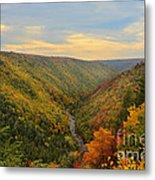 Blackwater Gorge With Fall Leaves Metal Print by Dan Friend