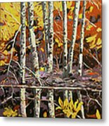 Blackwater  Metal Print