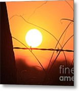 Blazing Orange Fence Line Sunset Metal Print