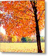 Blazing Tree Metal Print