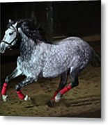 Blazzing Horse Metal Print