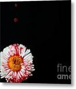 Bleeding Flower Metal Print