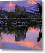 Blessings And Joy  Metal Print
