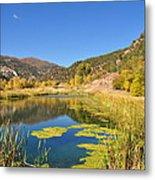 Beauty In Colorado Metal Print