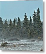 Blizzard Conditions Metal Print