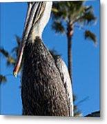 Blond Pelican Metal Print