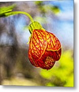 Blood Flower 9325 Metal Print