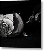 Bloodless Rose Metal Print