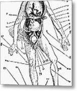 Bloodletting Chart, 1517 Metal Print