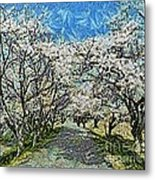 Blooming Cherry Tree Avenue Metal Print