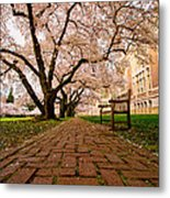 Blooming Giants Metal Print