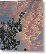 Blooming Tree And Sky Metal Print