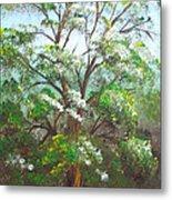Blooming Tree Metal Print