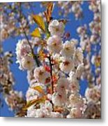 Blooming Trees Metal Print