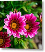 Blooming With Life Metal Print